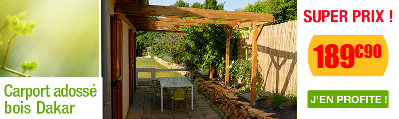 Carport adoss abri pour voiture oogarden france for Prix piscine 4x6