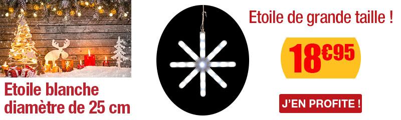 Motif lumineux Etoile blanche 25 cm Blachère