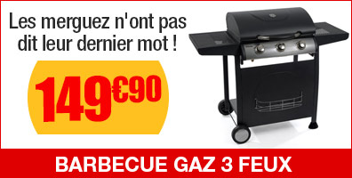 barbecue gaz illinois