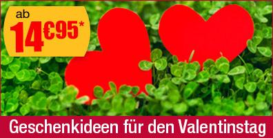 Geschenkideen f�r den Valentinstag