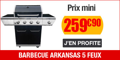 barbecue arkansas 5 feux