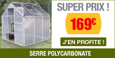 Serre de jardin polycarbonate 3,6m²
