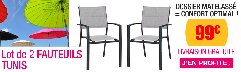 Lot De 2 Fauteuils TUNIS Gris