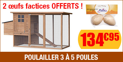 Poulailler + oeufs factices offerts